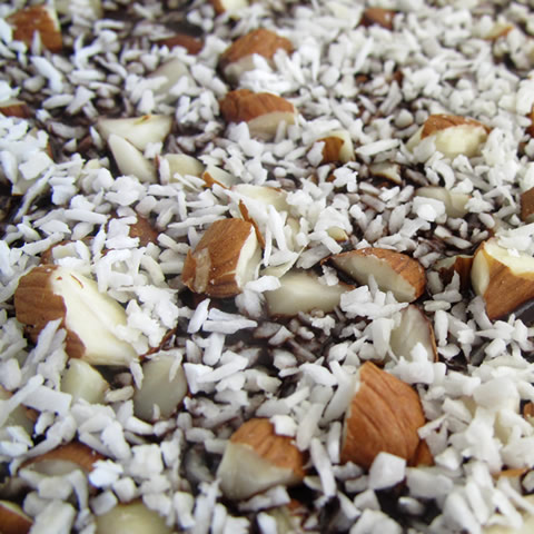Sugar-free chocolate bark recipe, with coconut and almonds