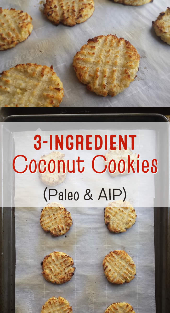 3 Ingredient Coconut Cookies